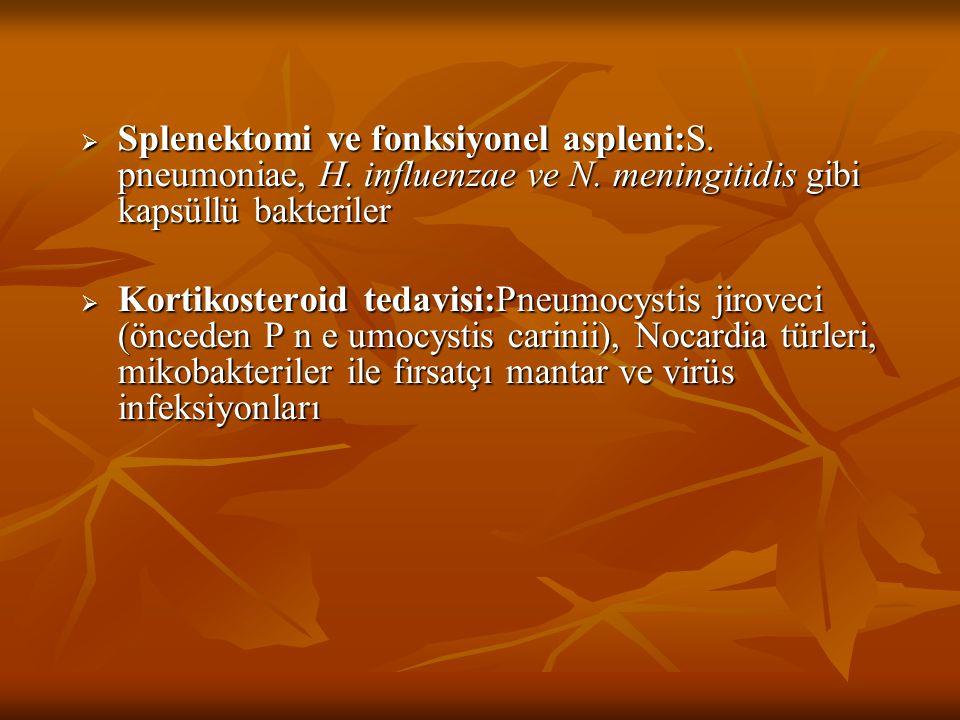  Splenektomi ve fonksiyonel aspleni:S. pneumoniae, H. influenzae ve N. meningitidis gibi kapsüllü bakteriler  Kortikosteroid tedavisi:Pneumocystis j