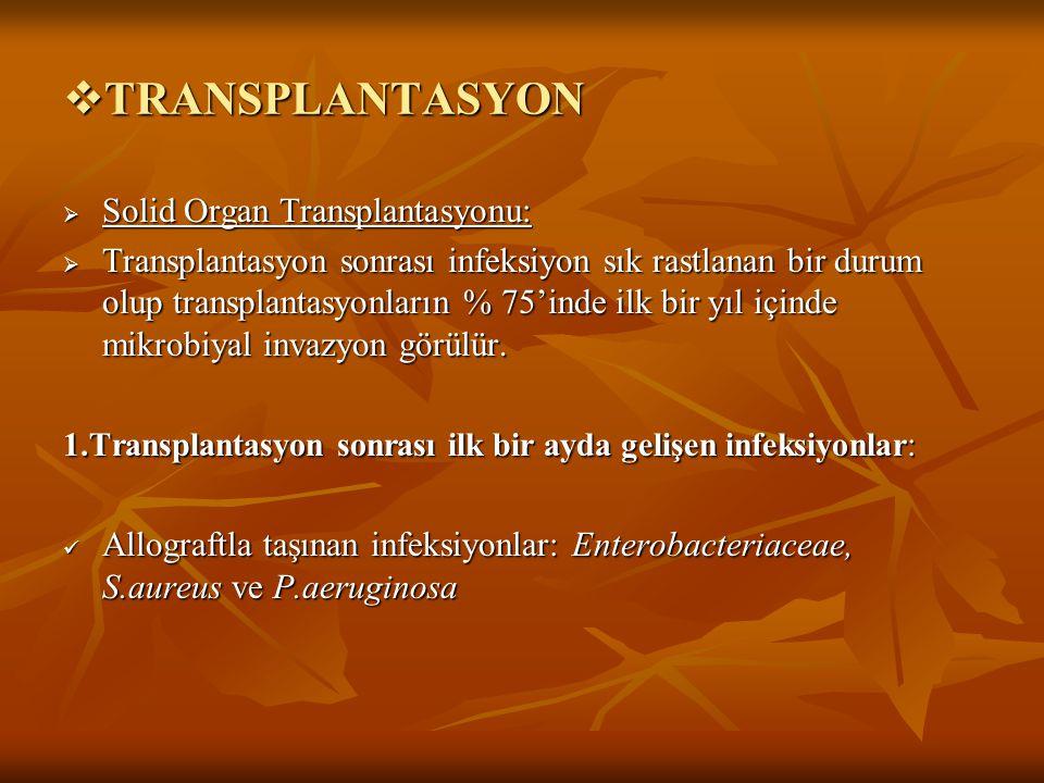  TRANSPLANTASYON  Solid Organ Transplantasyonu:  Transplantasyon sonrası infeksiyon sık rastlanan bir durum olup transplantasyonların % 75'inde ilk