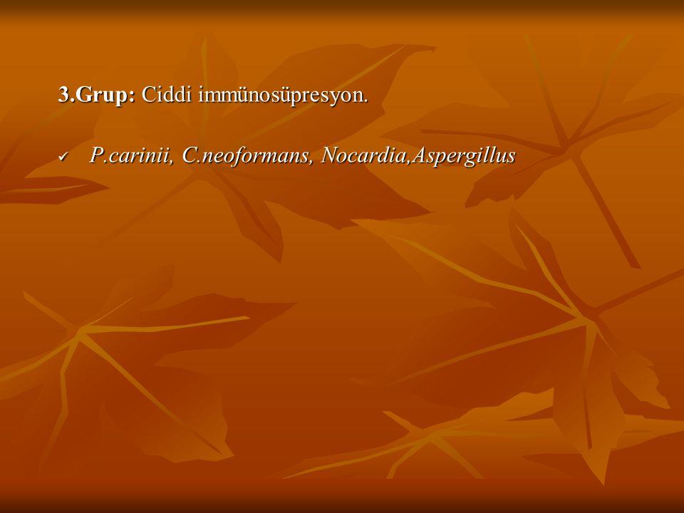 3.Grup: Ciddi immünosüpresyon. P.carinii, C.neoformans, Nocardia,Aspergillus P.carinii, C.neoformans, Nocardia,Aspergillus