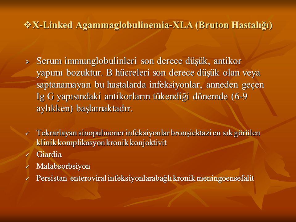  X-Linked Agammaglobulinemia-XLA (Bruton Hastalığı)  Serum immunglobulinleri son derece düşük, antikor yapımı bozuktur. B hücreleri son derece düşük