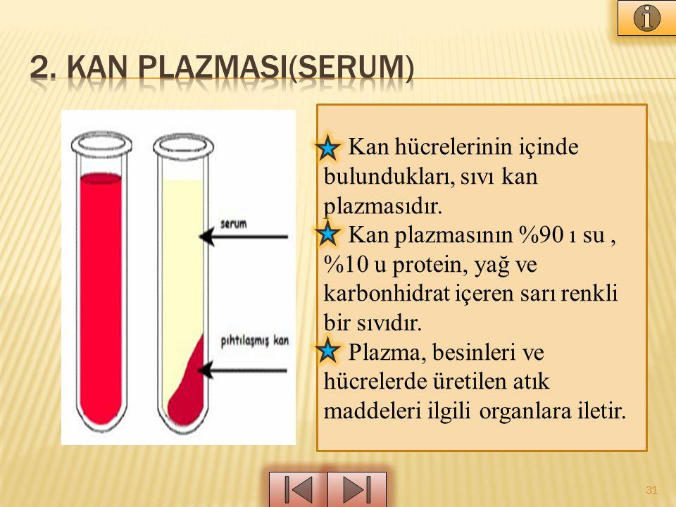 31 Kan hücrelerinin içinde bulundukları, sıvı kan plazmasıdır. Kan plazmasının %90 ı su, %10 u protein, yağ ve karbonhidrat içeren sarı renkli bir sıv