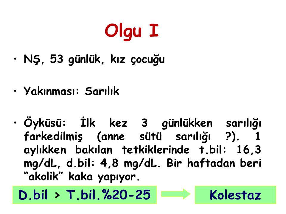 Laboratuvar: T.protein: 5,4 gr/dL, alb: 2 gr/dL, trigliserit: 155 mg/dL, kolesterol: 170 mg/dL.