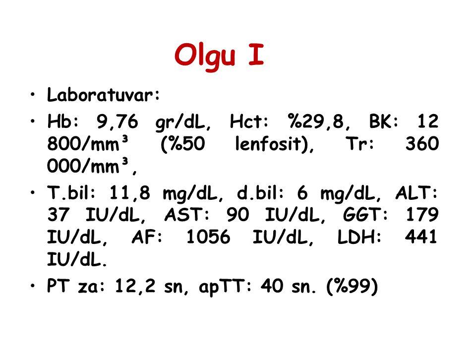 Laboratuvar: Kan şekeri: %90, T.protein: 4,91 gr/dL, alb: 3,69 gr/dL, trigliserit: 272 mg/dL, kolesterol: 193 mg/dL.