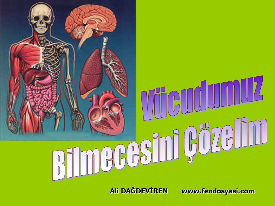 www.fendosyasi.com Ali DAĞDEVİREN