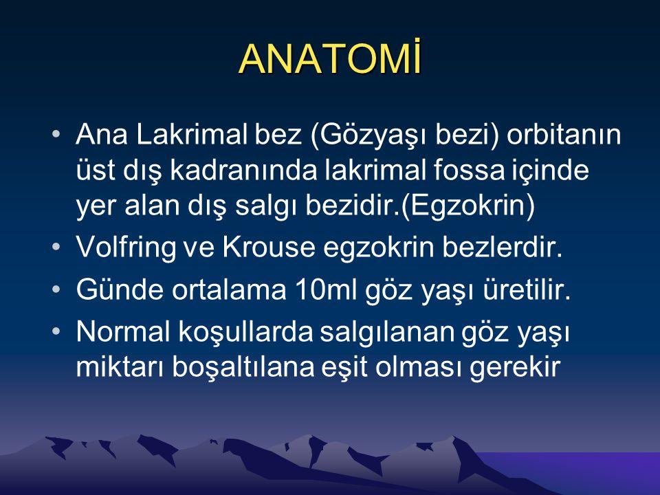 ANATOMİ Ana Lakrimal bez (Gözyaşı bezi) orbitanın üst dış kadranında lakrimal fossa içinde yer alan dış salgı bezidir.(Egzokrin) Volfring ve Krouse egzokrin bezlerdir.