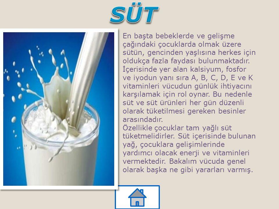 En başta bebeklerde ve gelişme çağındaki çocuklarda olmak üzere sütün, gencinden yaşlısına herkes için oldukça fazla faydası bulunmaktadır. İçerisinde