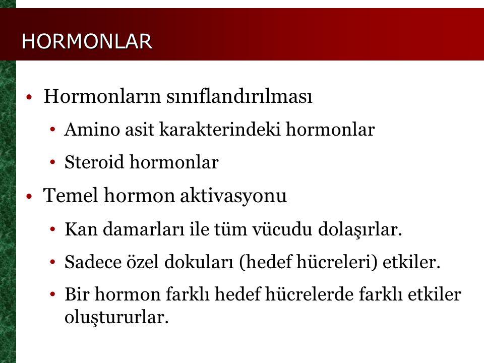 HORMONLAR Hormonların sınıflandırılması Amino asit karakterindeki hormonlar Steroid hormonlar Temel hormon aktivasyonu Kan damarları ile tüm vücudu do