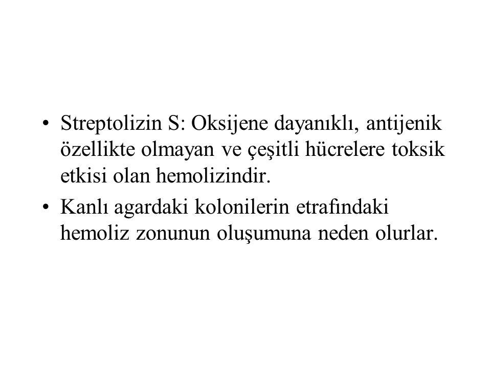 Streptolizin S: Oksijene dayanıklı, antijenik özellikte olmayan ve çeşitli hücrelere toksik etkisi olan hemolizindir. Kanlı agardaki kolonilerin etraf