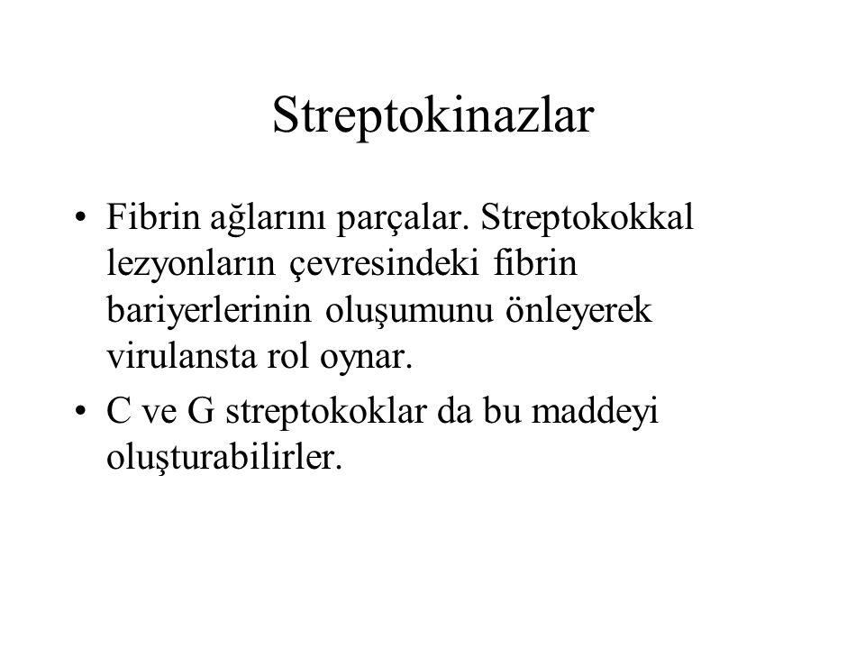 Streptokinazlar Fibrin ağlarını parçalar. Streptokokkal lezyonların çevresindeki fibrin bariyerlerinin oluşumunu önleyerek virulansta rol oynar. C ve