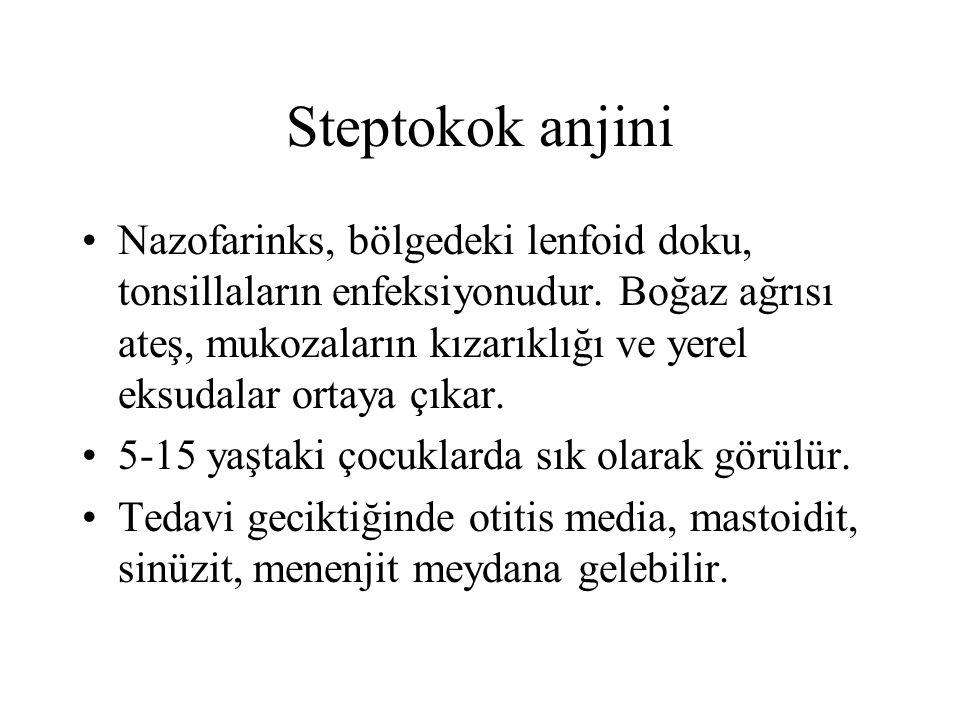 Steptokok anjini Nazofarinks, bölgedeki lenfoid doku, tonsillaların enfeksiyonudur. Boğaz ağrısı ateş, mukozaların kızarıklığı ve yerel eksudalar orta