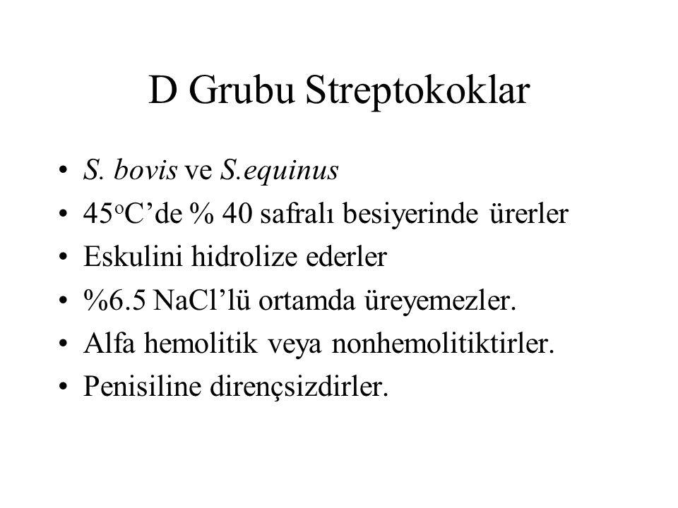 D Grubu Streptokoklar S. bovis ve S.equinus 45 o C'de % 40 safralı besiyerinde ürerler Eskulini hidrolize ederler %6.5 NaCl'lü ortamda üreyemezler. Al