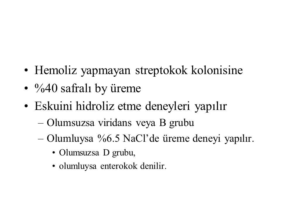 Hemoliz yapmayan streptokok kolonisine %40 safralı by üreme Eskuini hidroliz etme deneyleri yapılır –Olumsuzsa viridans veya B grubu –Olumluysa %6.5 N