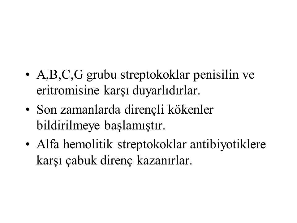 A,B,C,G grubu streptokoklar penisilin ve eritromisine karşı duyarlıdırlar. Son zamanlarda dirençli kökenler bildirilmeye başlamıştır. Alfa hemolitik s