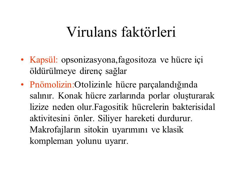 Virulans faktörleri Kapsül: opsonizasyona,fagositoza ve hücre içi öldürülmeye direnç sağlar Pnömolizin:Otolizinle hücre parçalandığında salınır. Konak