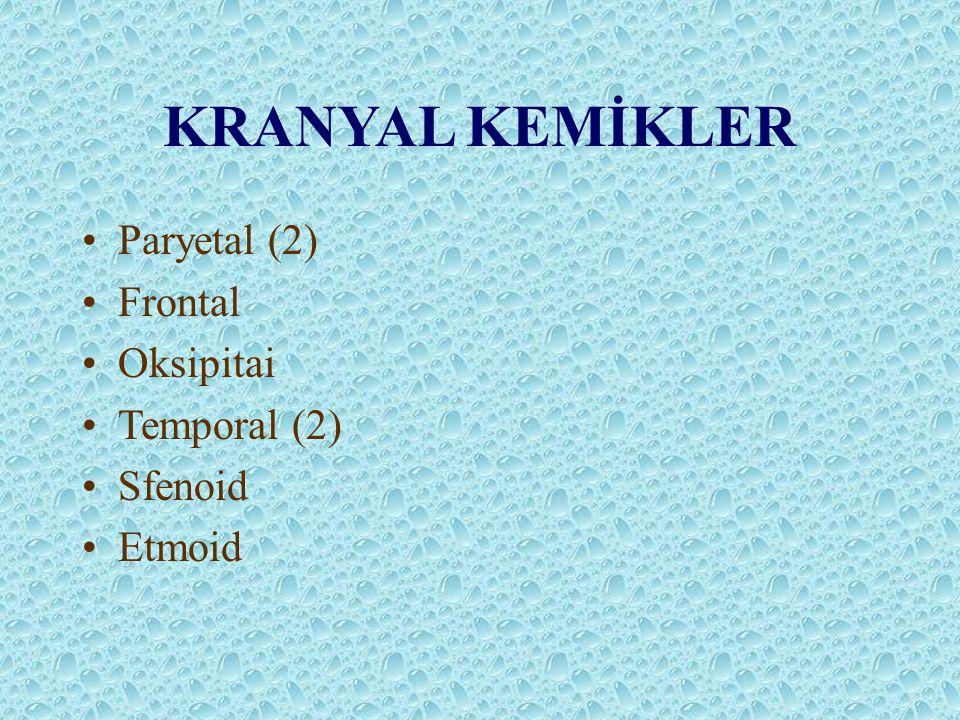 KRANYAL KEMİKLER Paryetal (2) Frontal Oksipitai Temporal (2) Sfenoid Etmoid