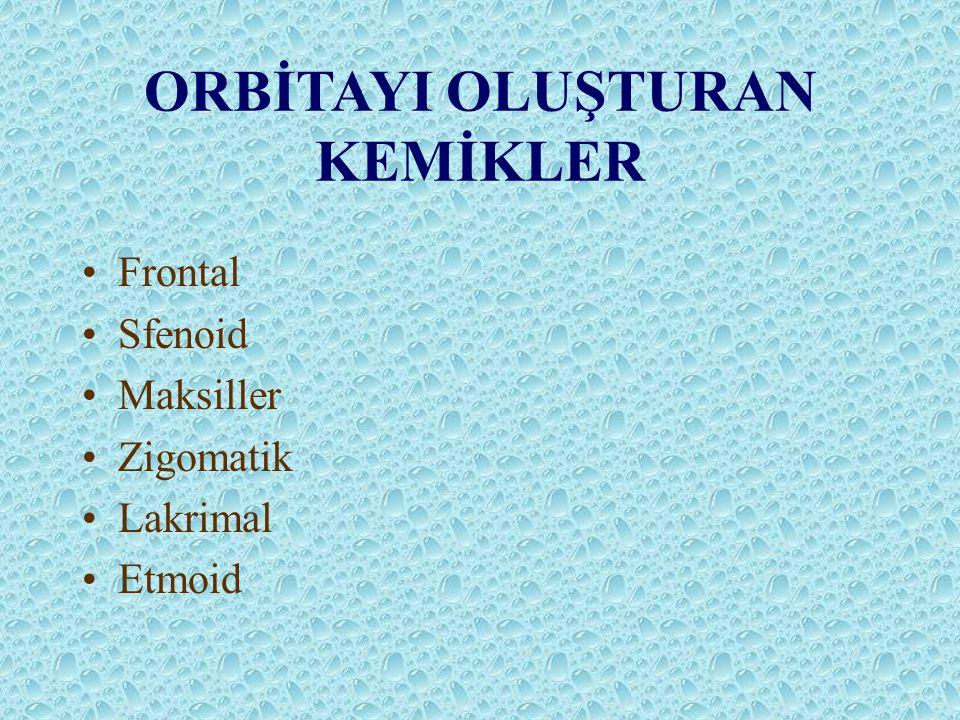 ORBİTAYI OLUŞTURAN KEMİKLER Frontal Sfenoid Maksiller Zigomatik Lakrimal Etmoid