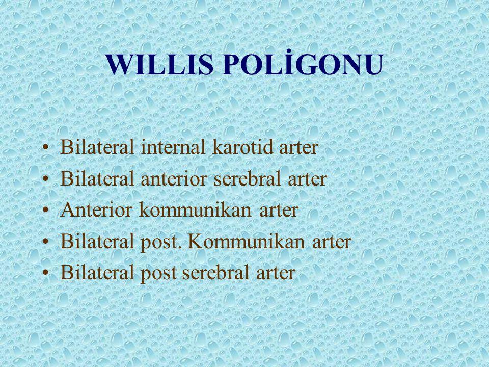 WILLIS POLİGONU Bilateral internal karotid arter Bilateral anterior serebral arter Anterior kommunikan arter Bilateral post. Kommunikan arter Bilatera