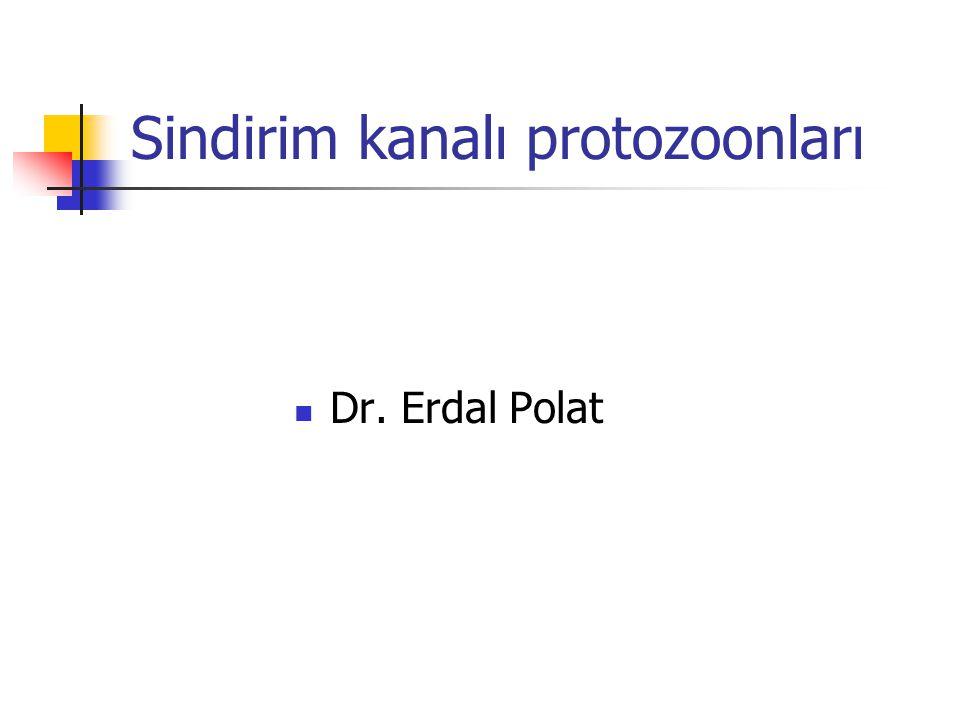 Giardia intestinalis (lamblia) Blefaroplast 4 çift Kamçı 4 çift Kist Vücut simetrili Çekirdek 2 Blefaroplast 4 çift Kamçı 4 çift Oval