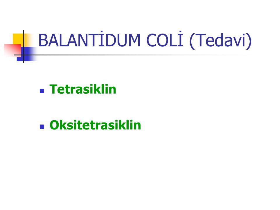 BALANTİDUM COLİ (Tedavi) Tetrasiklin Oksitetrasiklin