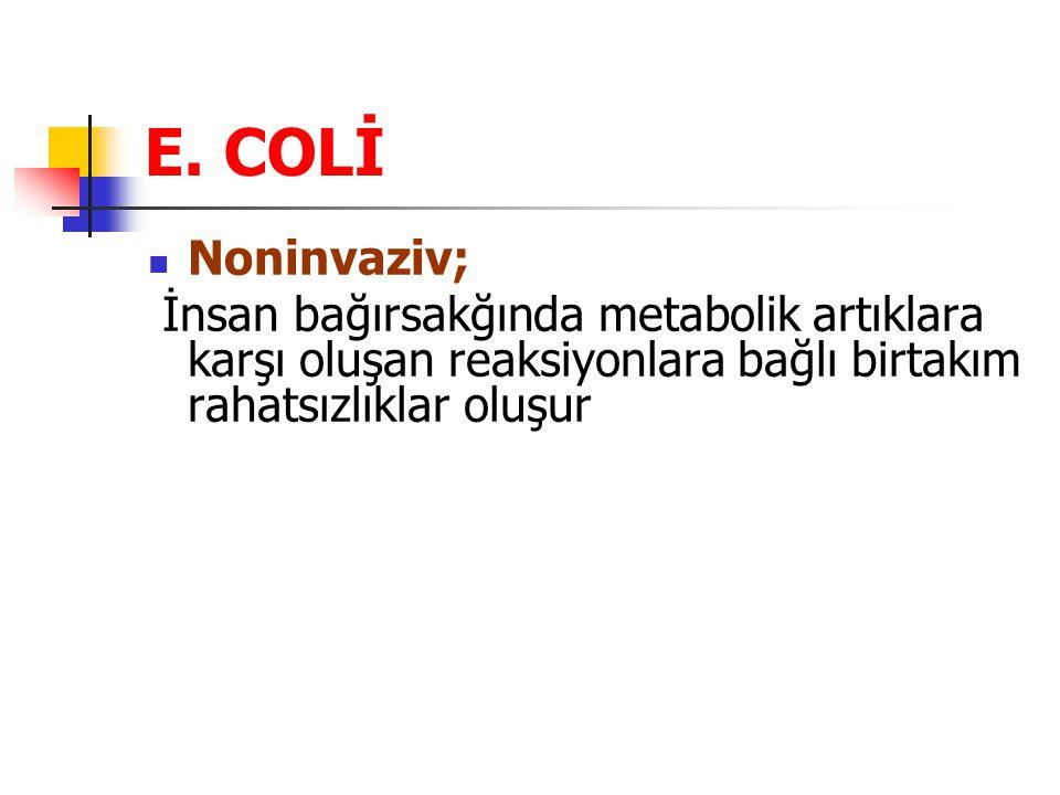 E. COLİ Noninvaziv; İnsan bağırsakğında metabolik artıklara karşı oluşan reaksiyonlara bağlı birtakım rahatsızlıklar oluşur