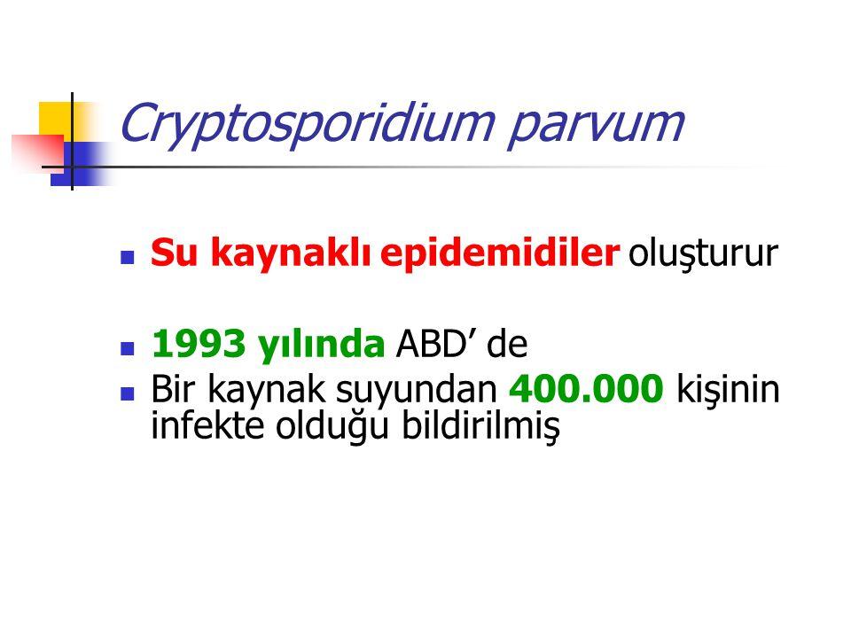 Cryptosporidium parvum Su kaynaklı epidemidiler oluşturur 1993 yılında ABD' de Bir kaynak suyundan 400.000 kişinin infekte olduğu bildirilmiş