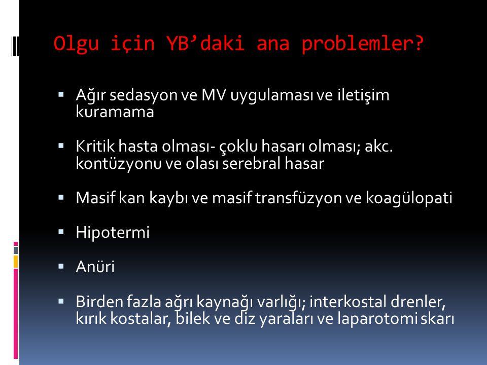 Olgu için YB'daki ana problemler.