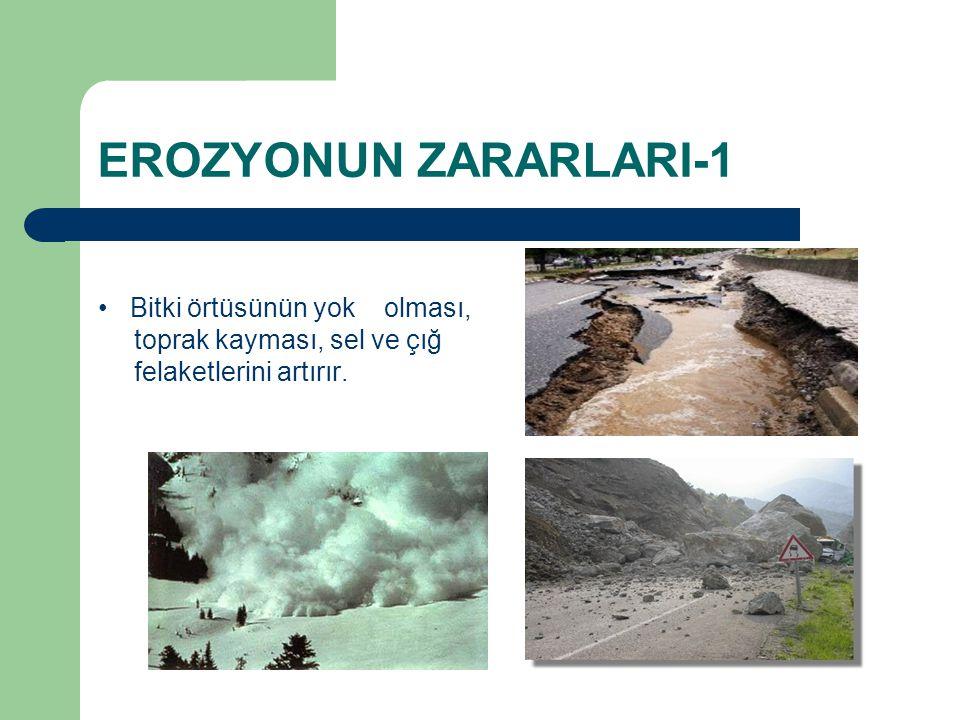 EROZYONUN ZARARLARI-1 Bitki örtüsünün yok olması, toprak kayması, sel ve çığ felaketlerini artırır.
