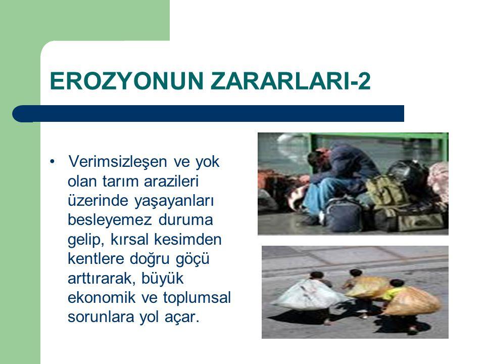 EROZYONUN ZARARLARI-2 Verimsizleşen ve yok olan tarım arazileri üzerinde yaşayanları besleyemez duruma gelip, kırsal kesimden kentlere doğru göçü arttırarak, büyük ekonomik ve toplumsal sorunlara yol açar.