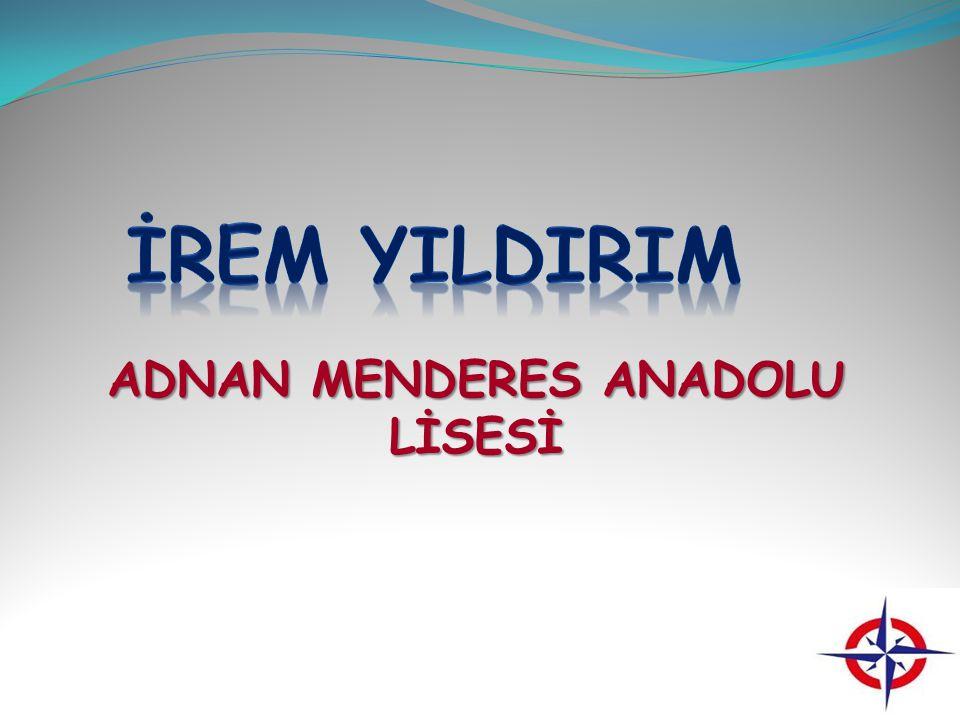 AYDIN ANADOLU LİSESİ