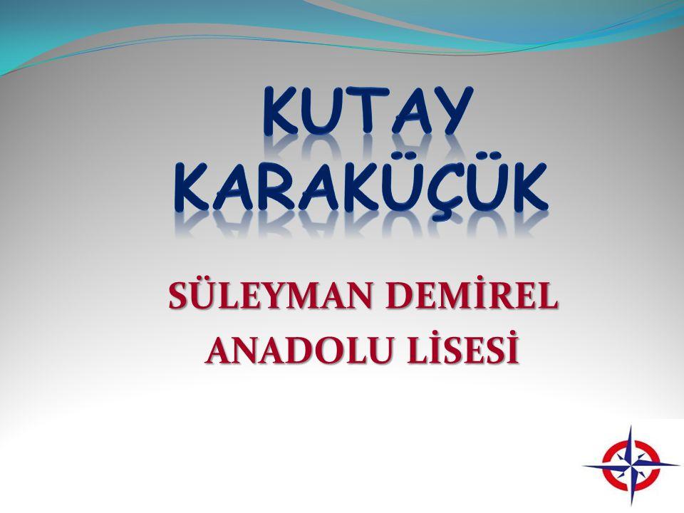 SÜLEYMAN DEMİREL ANADOLU LİSESİ