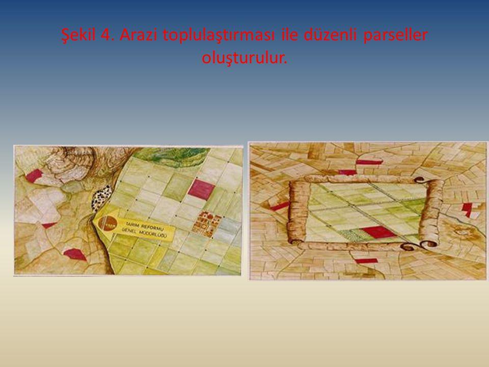 Şekil 4. Arazi toplulaştırması ile düzenli parseller oluşturulur.