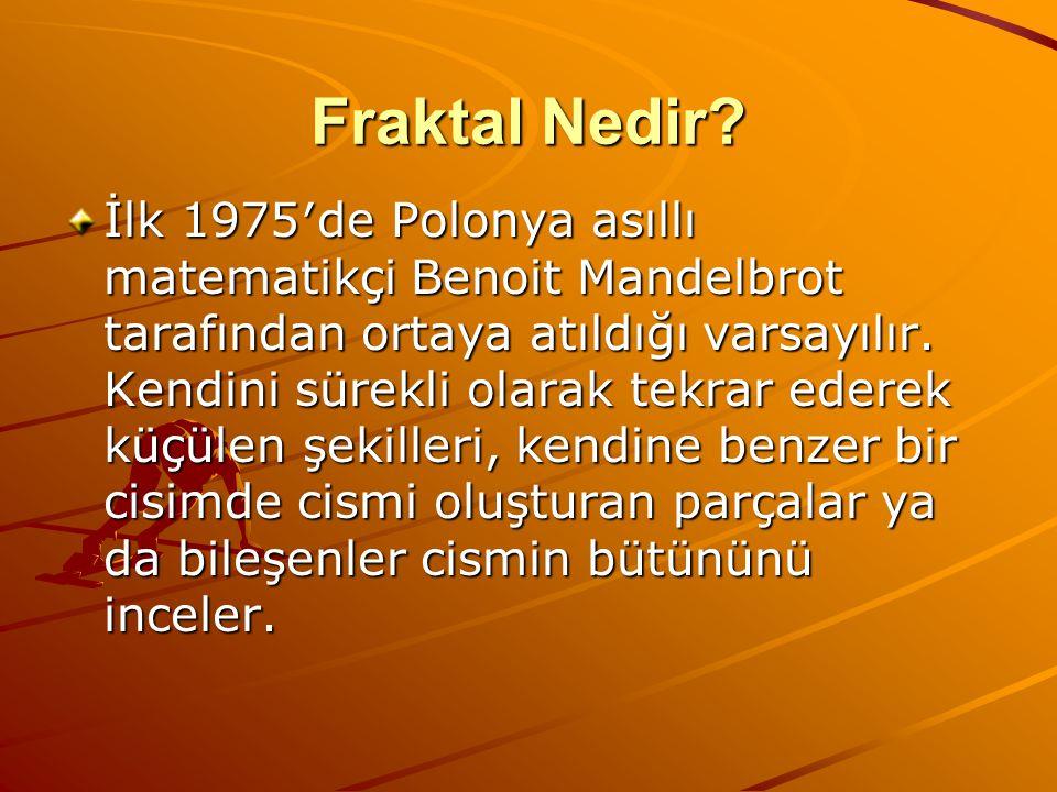 Fraktal Nedir? İlk 1975′de Polonya asıllı matematikçi Benoit Mandelbrot tarafından ortaya atıldığı varsayılır. Kendini sürekli olarak tekrar ederek kü