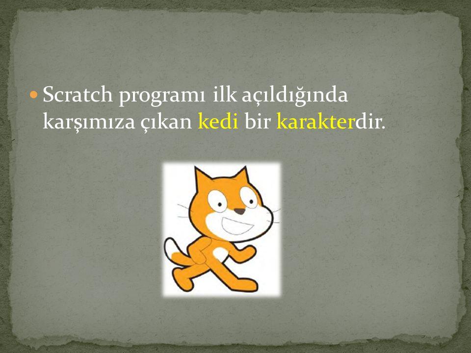 Scratch programı ilk açıldığında karşımıza çıkan kedi bir karakterdir.
