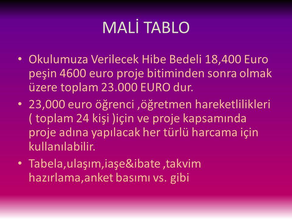 MALİ TABLO Okulumuza Verilecek Hibe Bedeli 18,400 Euro peşin 4600 euro proje bitiminden sonra olmak üzere toplam 23.000 EURO dur.