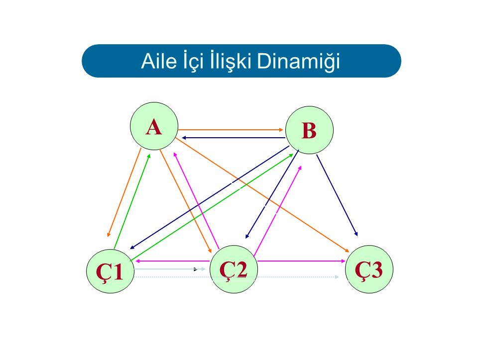 Aile İçi İlişki Dinamiği X = 1x2x3x4x5 = 120 Gerçekte ilişkiler daha karmaşıktır.