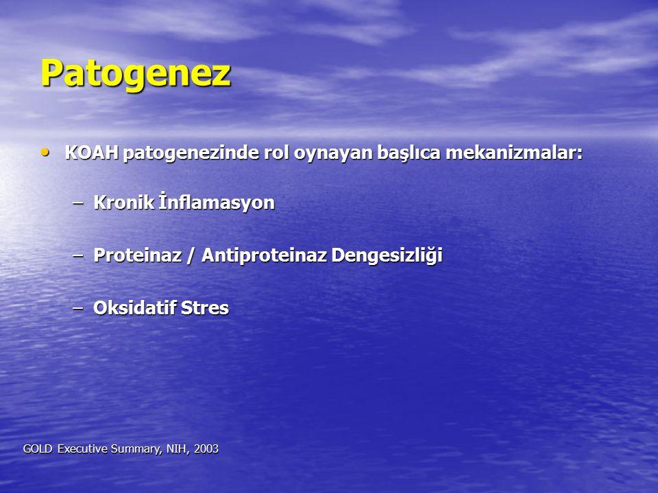 Patogenez KOAH patogenezinde rol oynayan başlıca mekanizmalar: KOAH patogenezinde rol oynayan başlıca mekanizmalar: –Kronik İnflamasyon –Proteinaz / A