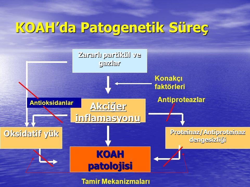 Zararlı partikül ve gazlar Akciğer inflamasyonu KOAH patolojisi Konakçı faktörleri Proteinaz/Antiproteinaz dengesizliği Oksidatif yük Antioksidanlar A