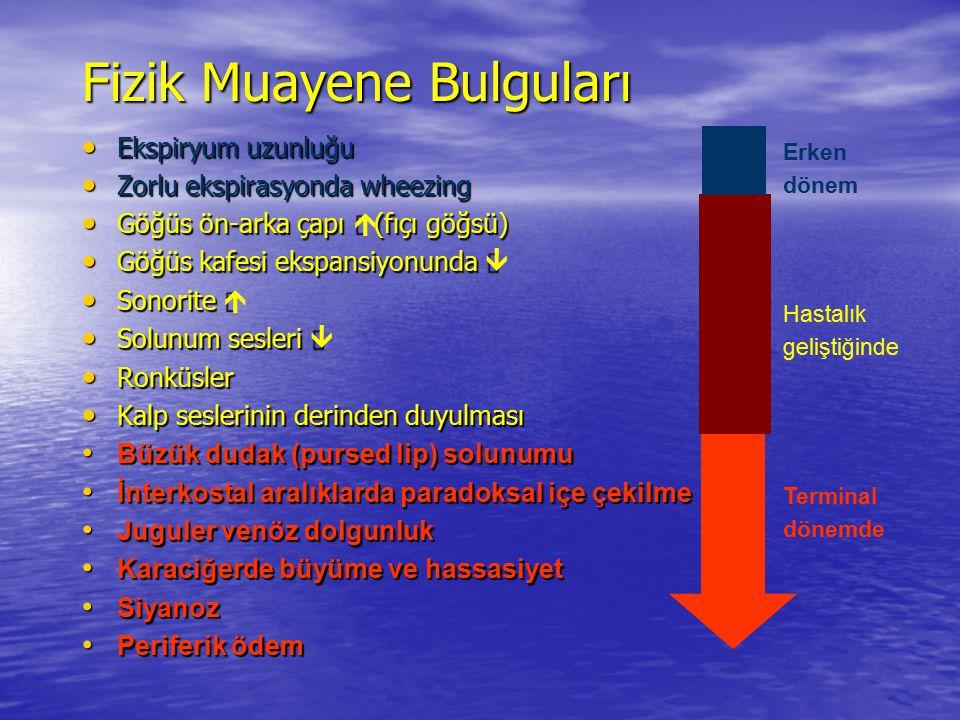 Fizik Muayene Bulguları Ekspiryum uzunluğu Ekspiryum uzunluğu Zorlu ekspirasyonda wheezing Zorlu ekspirasyonda wheezing Göğüs ön-arka çapı  (fıçı göğ