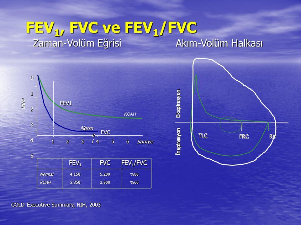 FEV 1, FVC ve FEV 1 /FVC Zaman-Volüm Eğrisi FEV 1 FVCFEV 1 /FVC Normal4.1505.200%80 KOAH2.3503.900%60 KOAH FEV1 FVC Norm a l Saniye 123456 012345 Litr