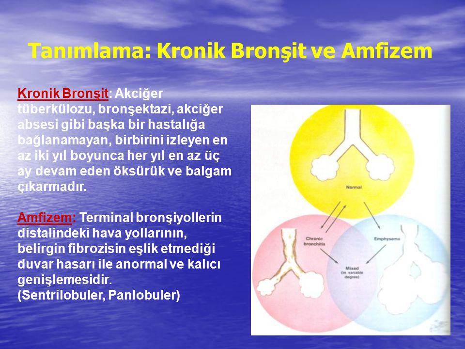 Tanımlama: Kronik Bronşit ve Amfizem Kronik Bronşit: Akciğer tüberkülozu, bronşektazi, akciğer absesi gibi başka bir hastalığa bağlanamayan, birbirini