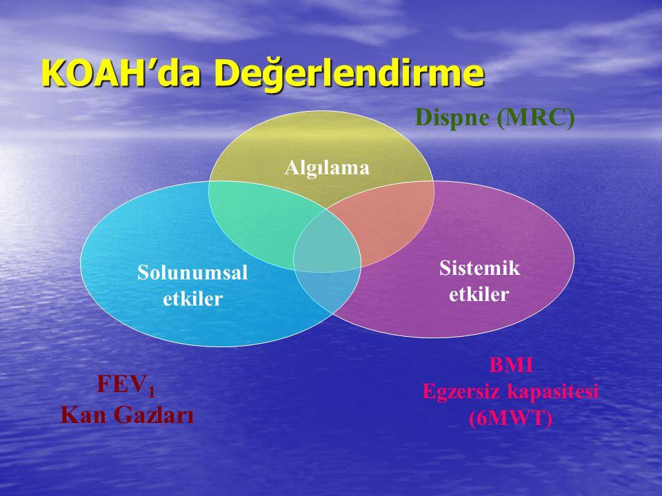 Algılama Solunumsal etkiler Sistemik etkiler Dispne (MRC) BMI Egzersiz kapasitesi (6MWT) FEV 1 Kan Gazları KOAH'da Değerlendirme