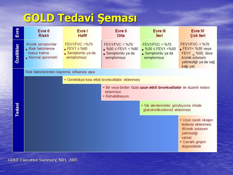 Evre Özellikler Tedavi GOLD Tedavi Şeması GOLD Tedavi Şeması GOLD Executive Summary, NIH, 2005 Evre 0 Riskli Evre I Hafif Evre II Orta Evre III İleri