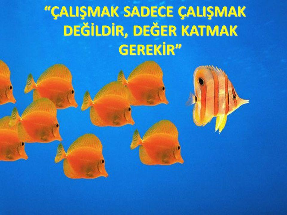 """""""ÇALIŞMAK SADECE ÇALIŞMAK DEĞİLDİR, DEĞER KATMAK GEREKİR"""""""