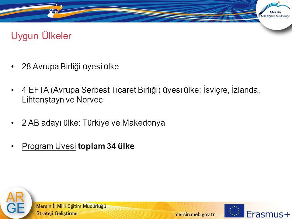 Uygun Ülkeler 28 Avrupa Birliği üyesi ülke 4 EFTA (Avrupa Serbest Ticaret Birliği) üyesi ülke: İsviçre, İzlanda, Lihtenştayn ve Norveç 2 AB adayı ülke