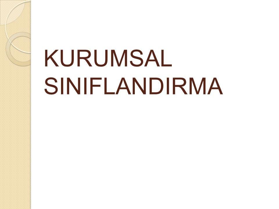 KURUMSAL SINIFLANDIRMA