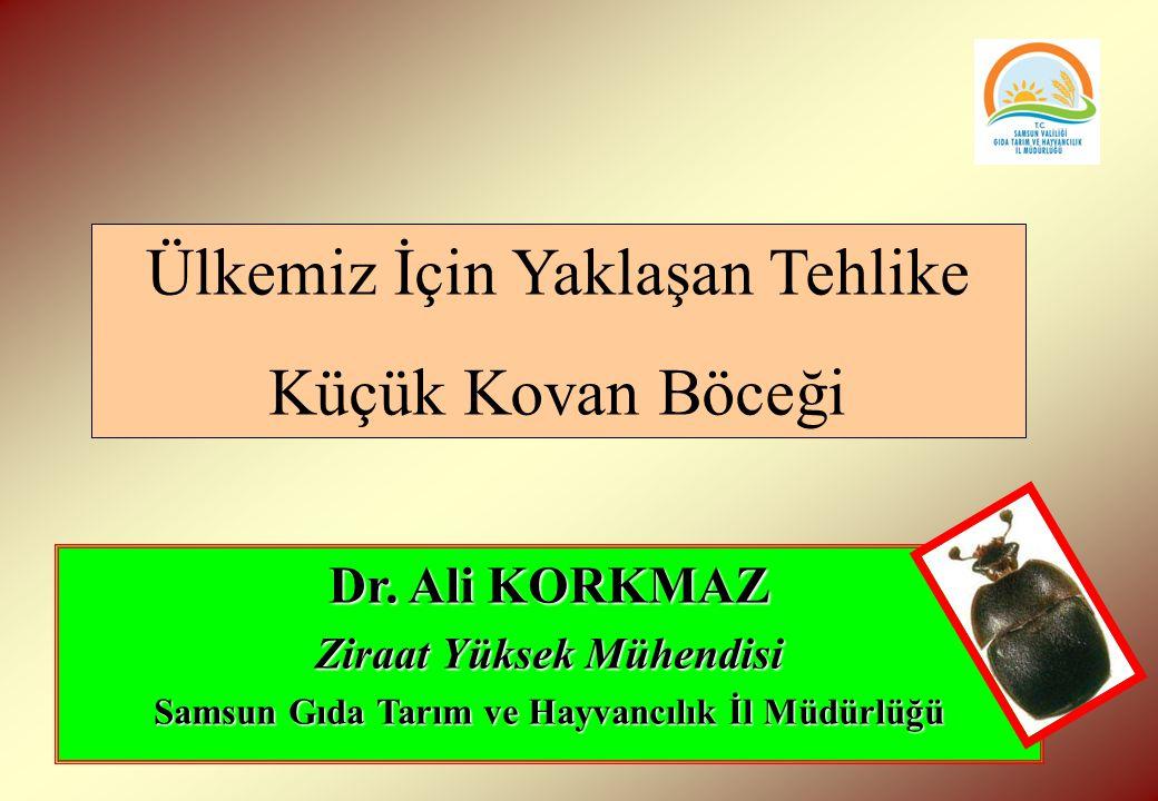 Dr. Ali KORKMAZ Ziraat Yüksek Mühendisi Samsun Gıda Tarım ve Hayvancılık İl Müdürlüğü Ülkemiz İçin Yaklaşan Tehlike Küçük Kovan Böceği