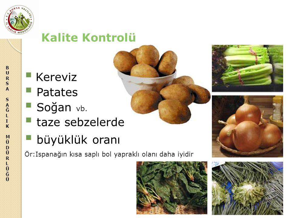 BURSASAĞLIKMÜDÜRLÜĞÜBURSASAĞLIKMÜDÜRLÜĞÜ  Kereviz  Patates  Soğan vb.  taze sebzelerde  büyüklük oranı Ör:Ispanağın kısa saplı bol yapraklı olanı