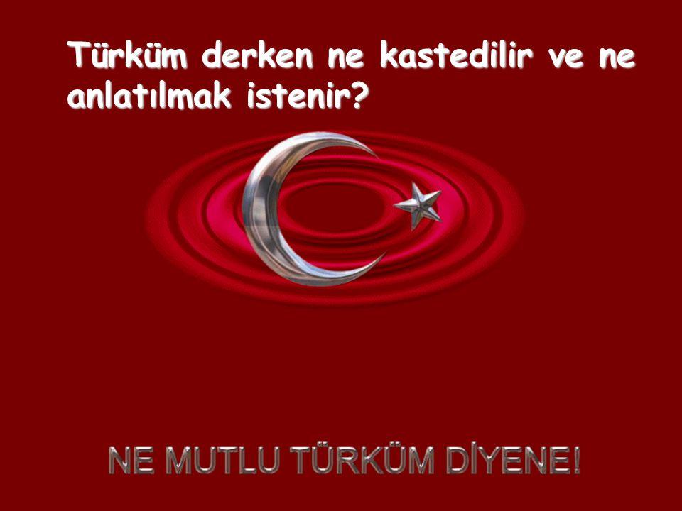 Atatürk Türk Milleti'ni,