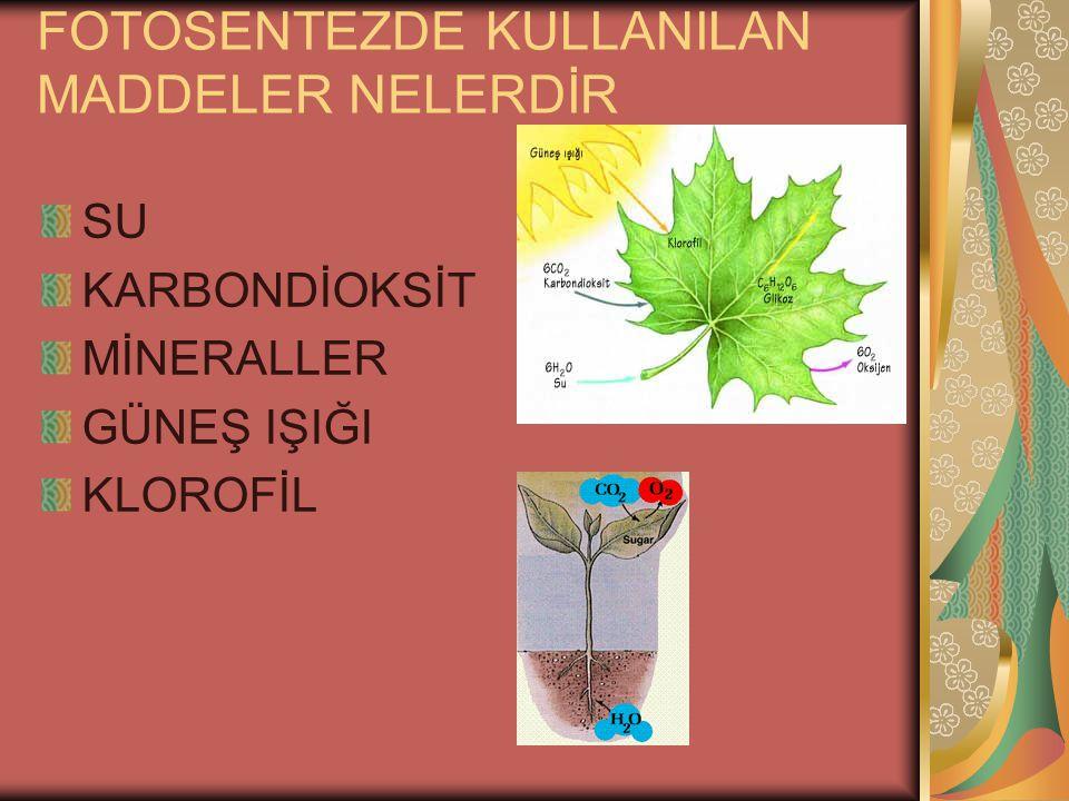 OKSİJENSİZ SOLUNUMUN ÖZELLİKLERİ NELERDİR DİĞER ADI FERMANTASYONDUR(MAYALANM A) 4 ATP ÜRETİLİR 2 Sİ HARCANIR NET 2 ATP AÇIĞA ÇIKAR FARKLI CANLILARIN FERMANTASYONUNDA FARKLI ÜRÜNLER ORTAYA ÇIKAR SİTOPLAZMADA GERÇEKLEŞİR