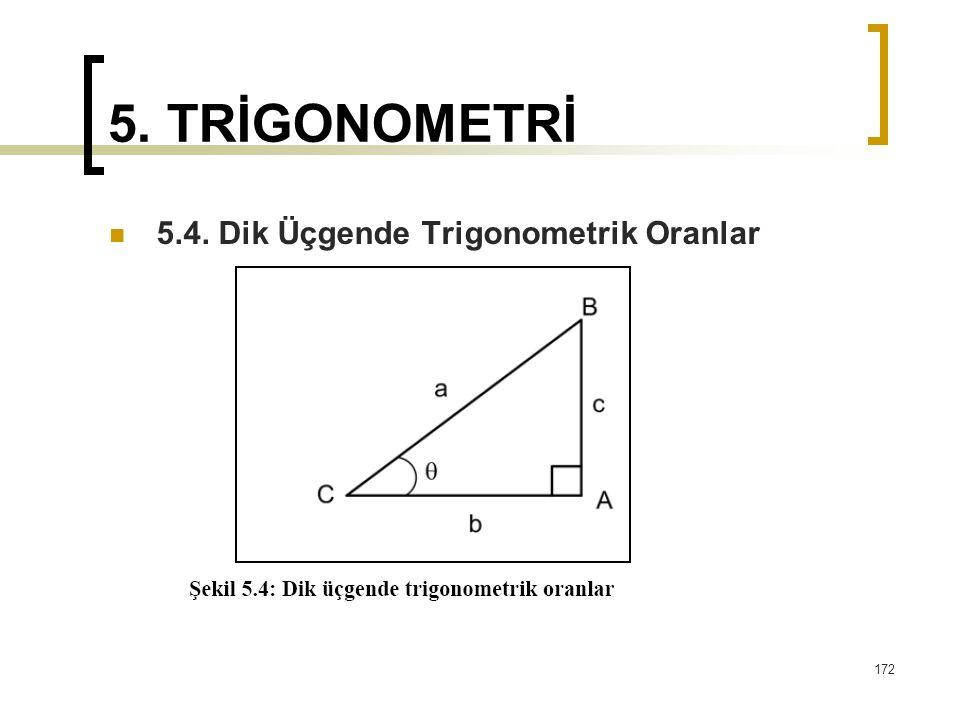 5. TRİGONOMETRİ 5.4. Dik Üçgende Trigonometrik Oranlar 172